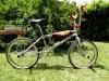 S&M Dirt Bike 1993 de Franck Belliot